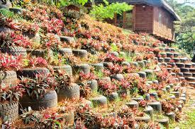car tire garden wall